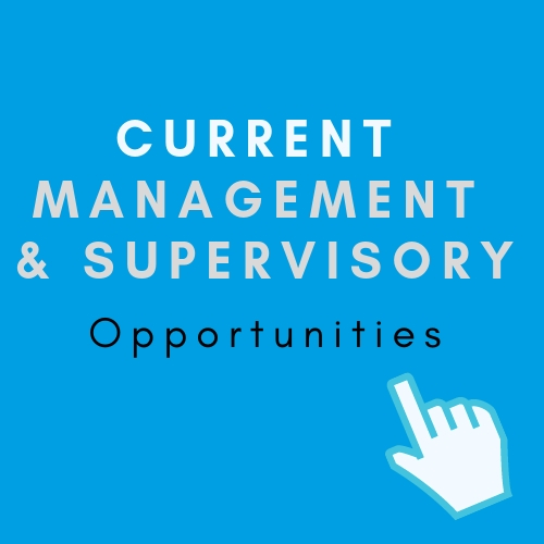 management and supervisory opportunities